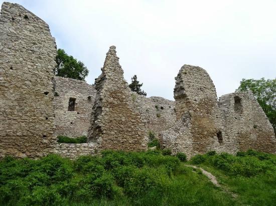 Руины замка Bydlin, Польша