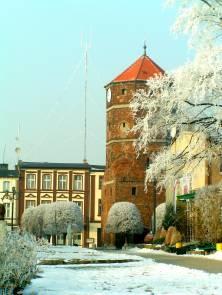 Жнин, Польша