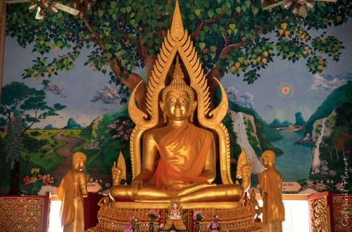 Ko Samui, Provincia de Surat Thani